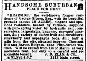 Braieside ad from Richmond Times Dispatch January 31 1892.